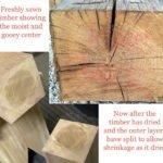 Timber checking cracks